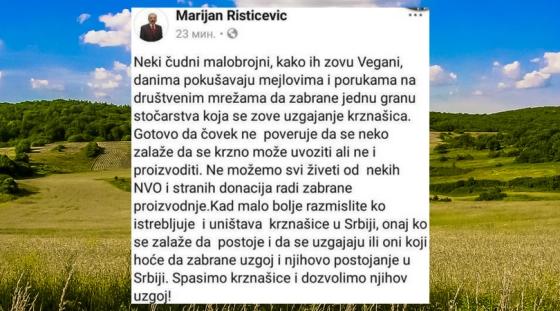 Marijan Risticevic